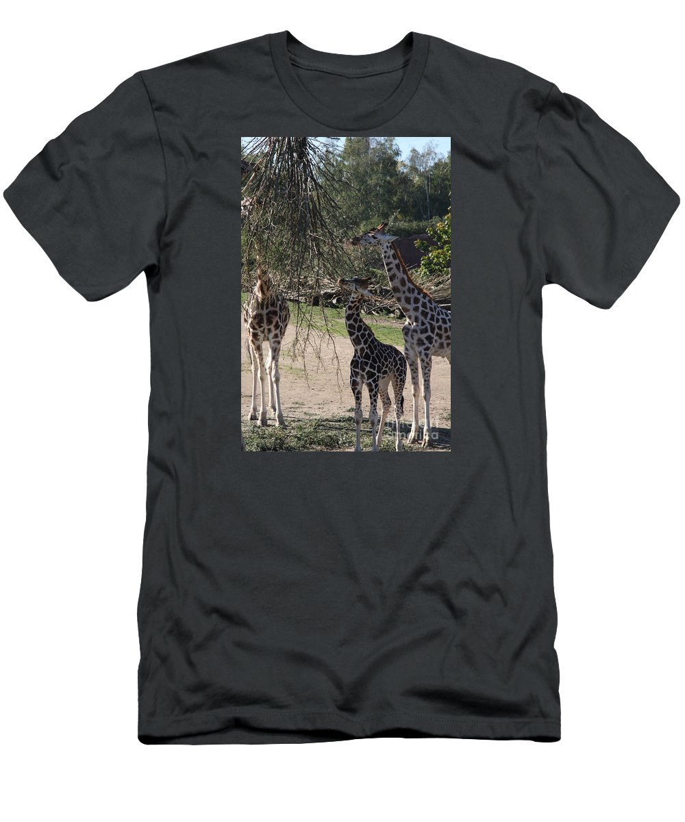 Giraffe Men's T-Shirt (Athletic Fit) featuring the photograph Long Necks by Christiane Schulze Art And Photography