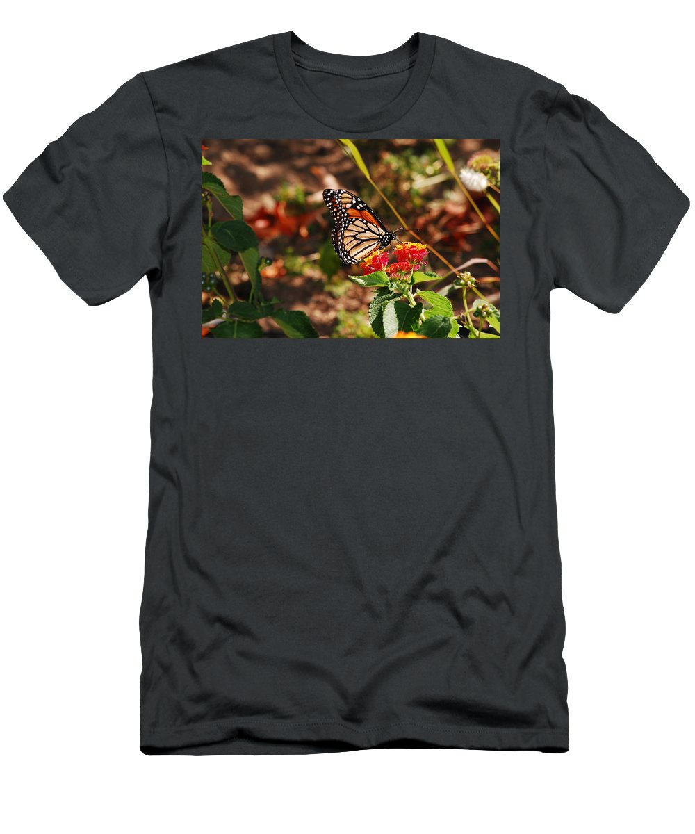Monarch Men's T-Shirt (Athletic Fit) featuring the photograph Looking For Nectar by Lori Tambakis