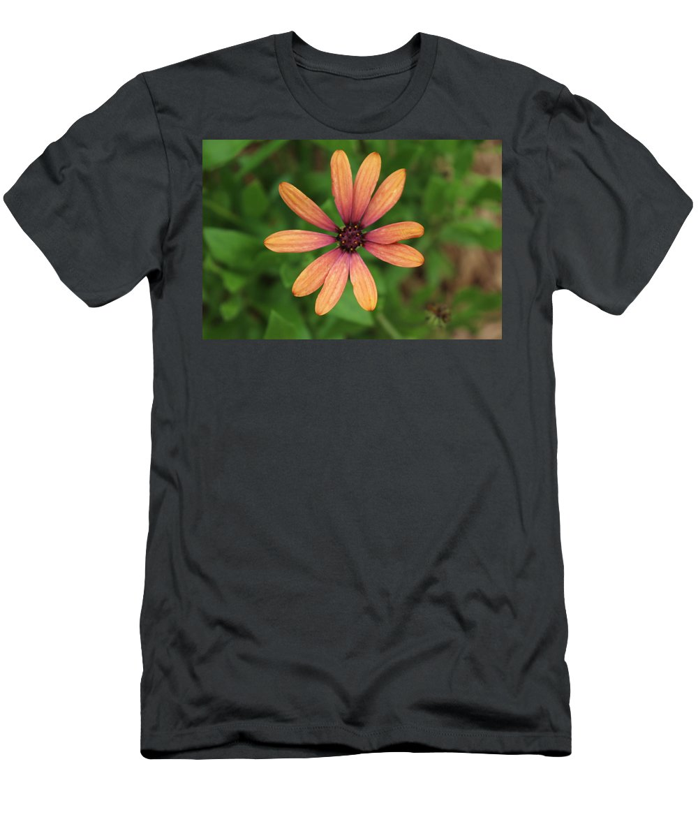 Petals Men's T-Shirt (Athletic Fit) featuring the photograph Love Me Not by Brock Tinney