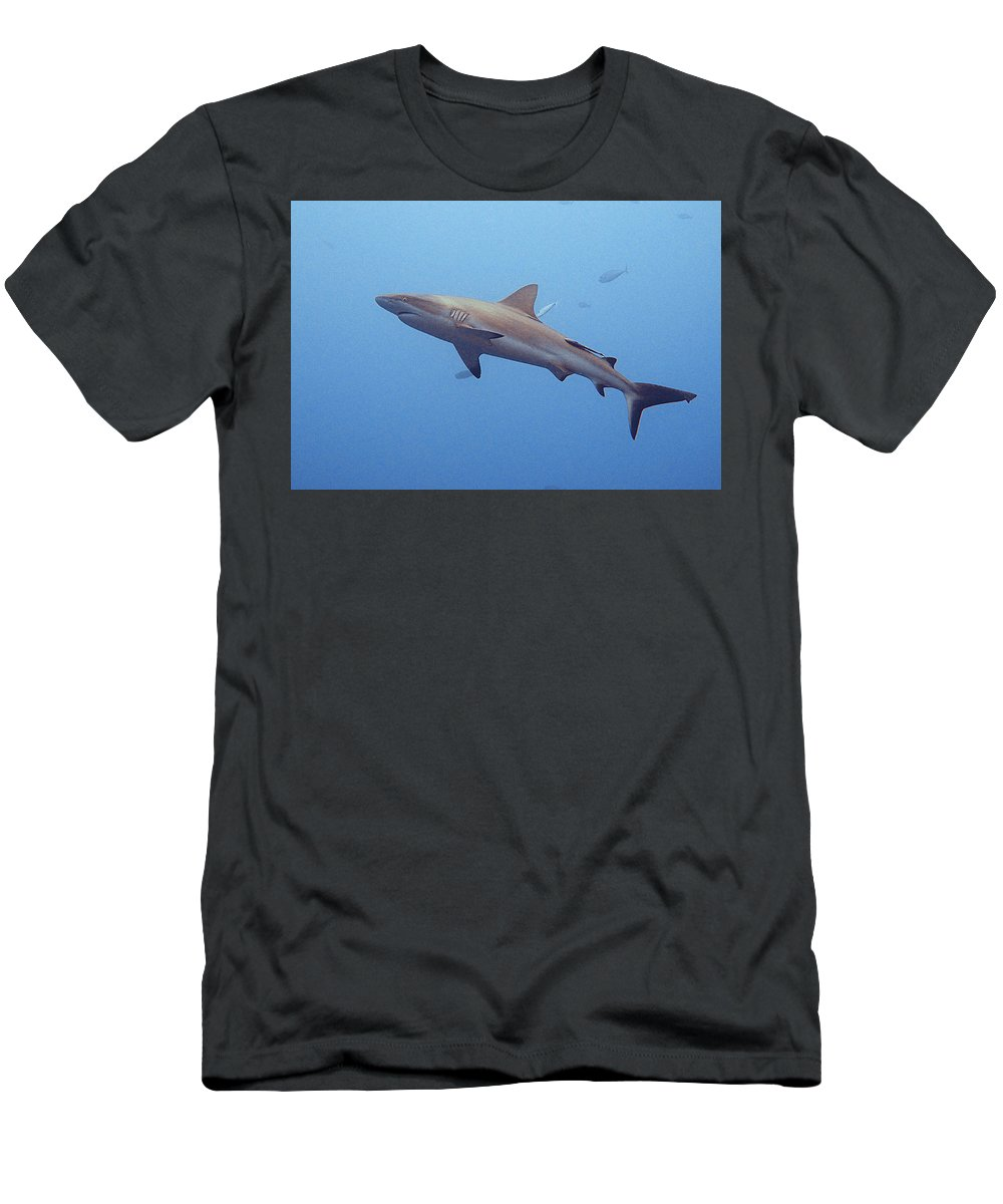 Underwater Men's T-Shirt (Athletic Fit) featuring the photograph Lunch Anyone? by Susan Burger
