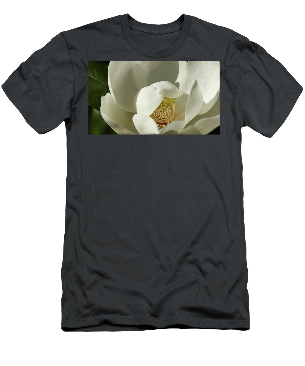 Flower Men's T-Shirt (Athletic Fit) featuring the photograph Magnolia by Cathi Abbiss Crane