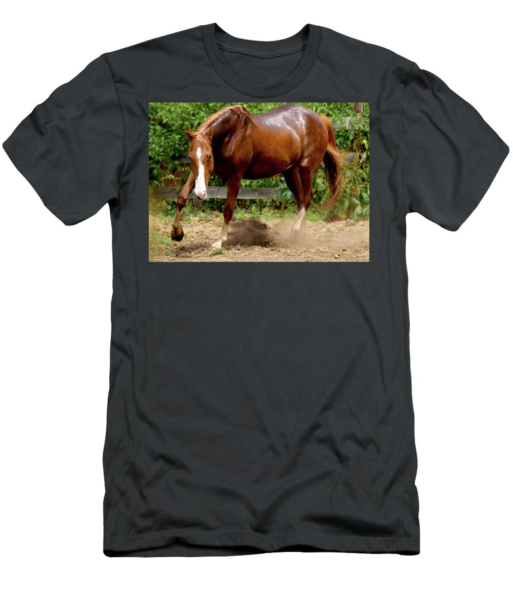 Horse Men's T-Shirt (Athletic Fit) featuring the photograph Majestic Horse by Julie Niemela