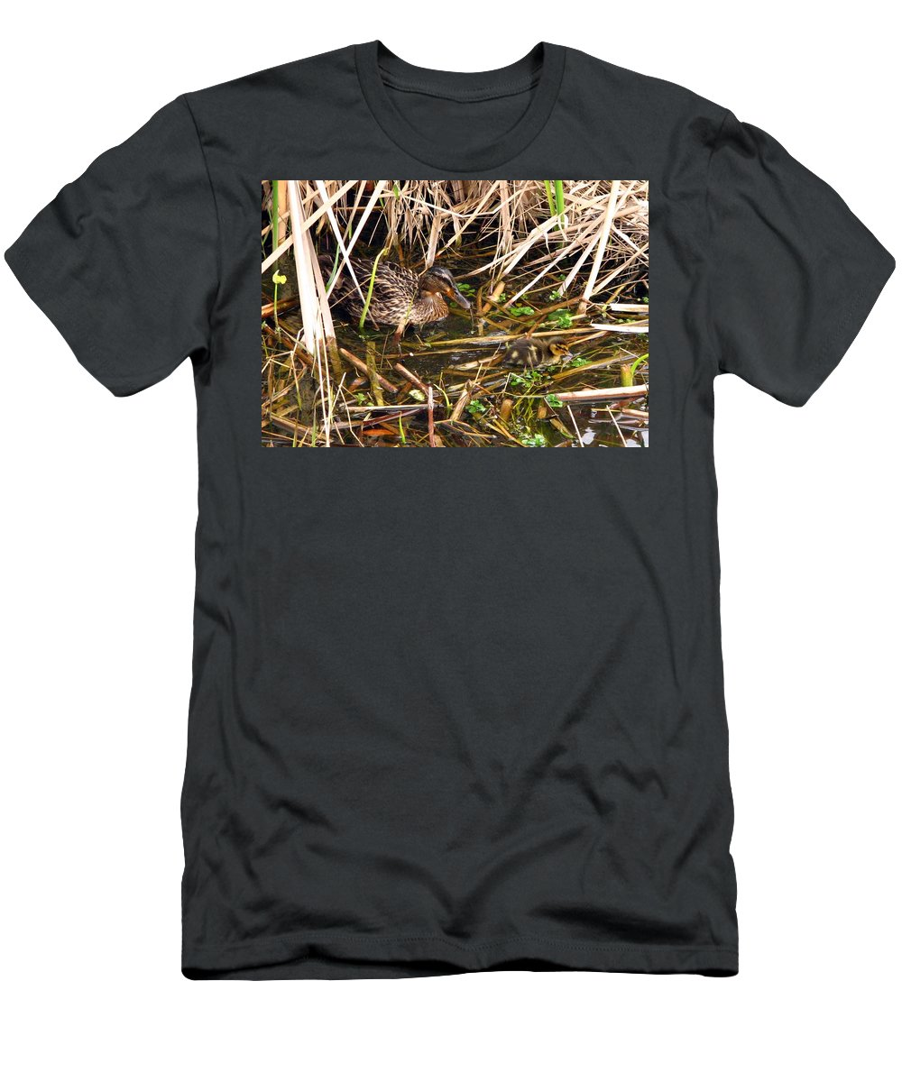Duck Men's T-Shirt (Athletic Fit) featuring the photograph Mallard Mama With Duckling by J M Farris Photography