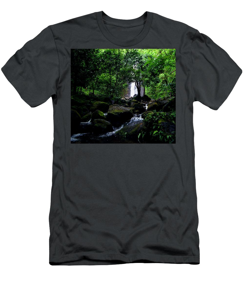 Hawaii T-Shirt featuring the photograph Manoa Falls Stream by Kevin Smith