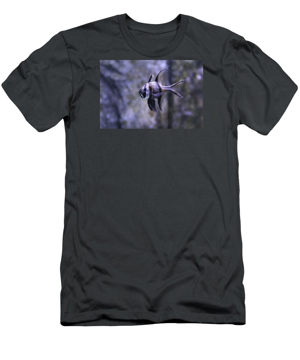 Marine Men's T-Shirt (Athletic Fit) featuring the photograph Marine Fish by Kyle Hillman