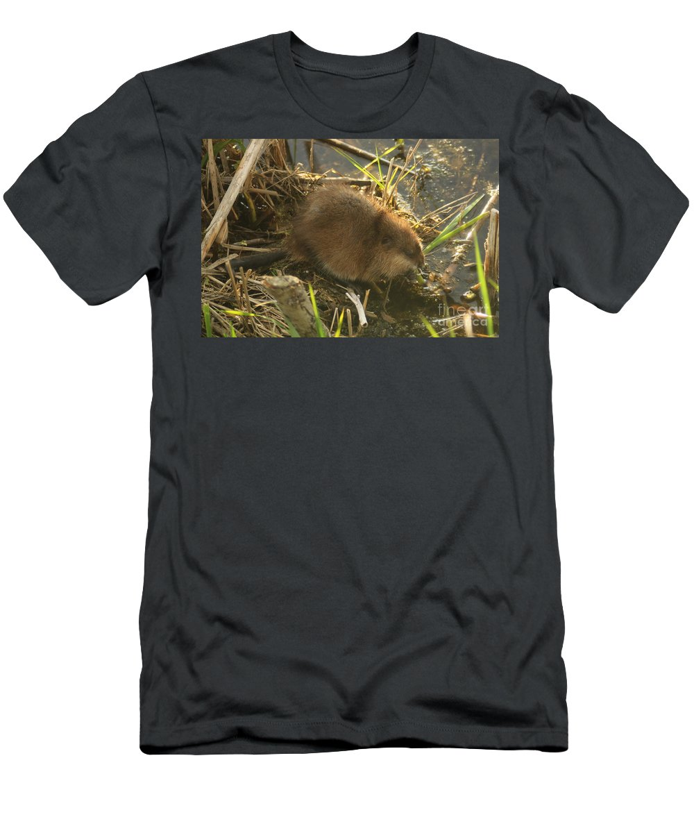 Men's T-Shirt (Athletic Fit) featuring the photograph Marsh Life by Christopher Johnson