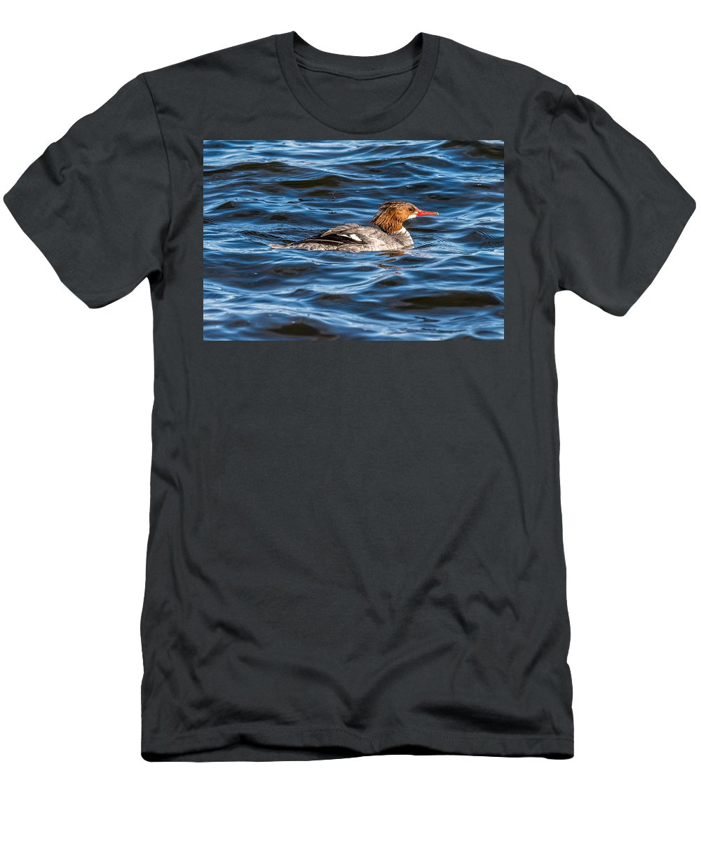 Female Men's T-Shirt (Athletic Fit) featuring the photograph Merganser by Paul Freidlund