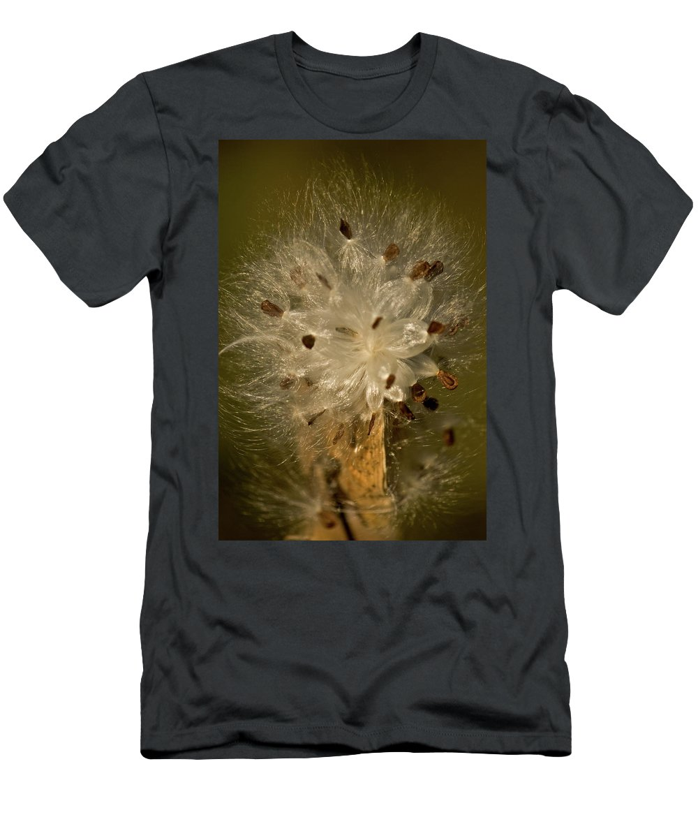 milkweed Portrait Men's T-Shirt (Athletic Fit) featuring the photograph Milkweed Portrait by Paul Mangold