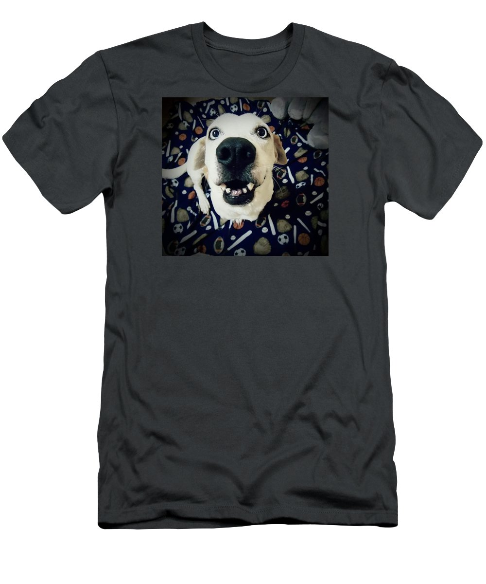 Basset Men's T-Shirt (Athletic Fit) featuring the photograph Milo The Basset by Brandi Tye