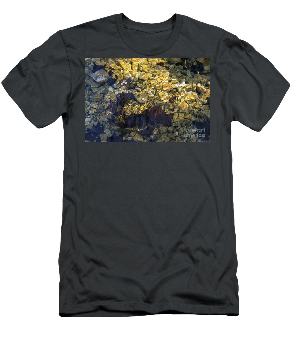 Lost Maples State Natural Area Men's T-Shirt (Athletic Fit) featuring the photograph Minnow Habitat by Bob Phillips