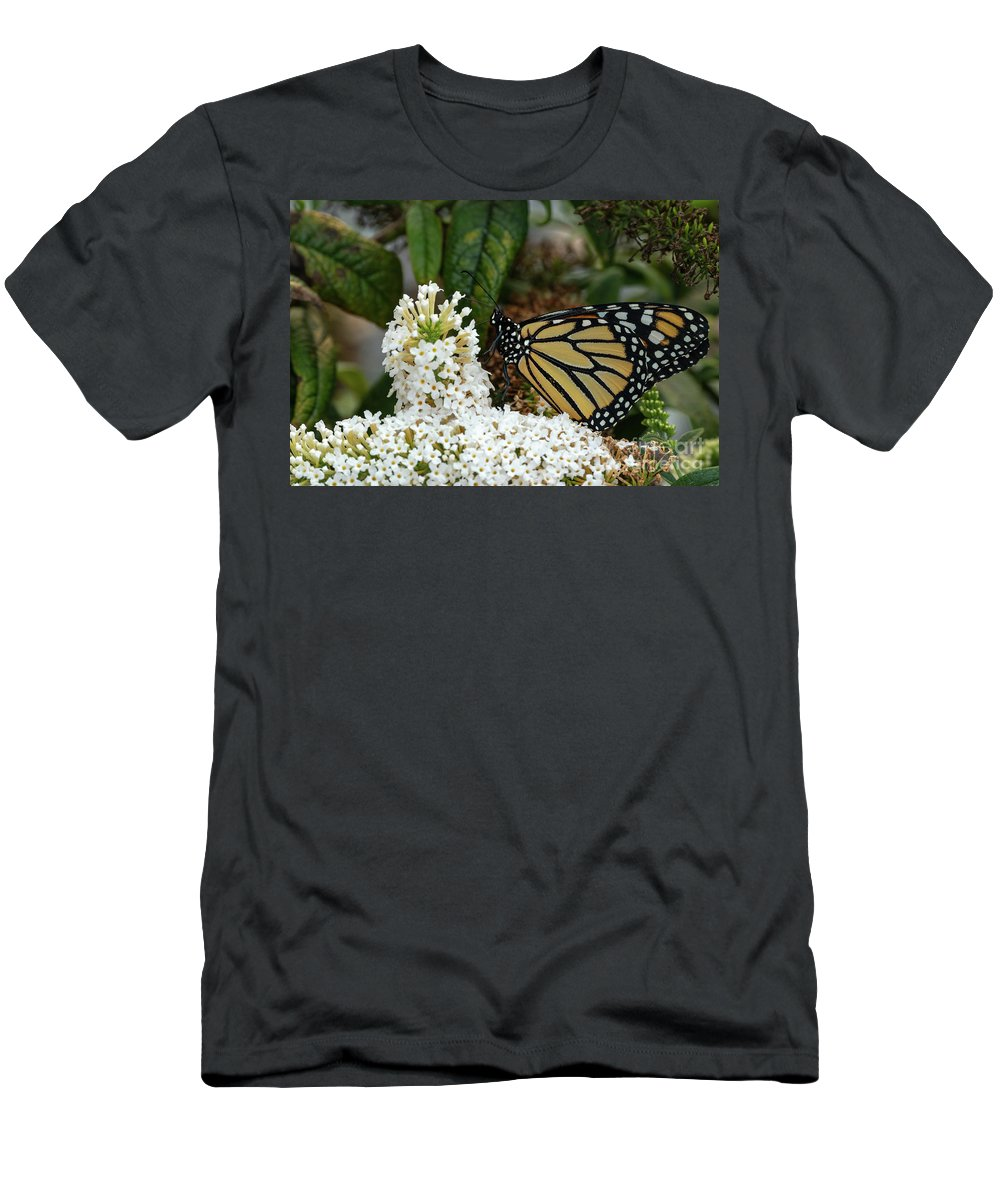 Monarch Butterfly Men's T-Shirt (Athletic Fit) featuring the photograph Monarch And The Butterfly Bush by Dylan Brett
