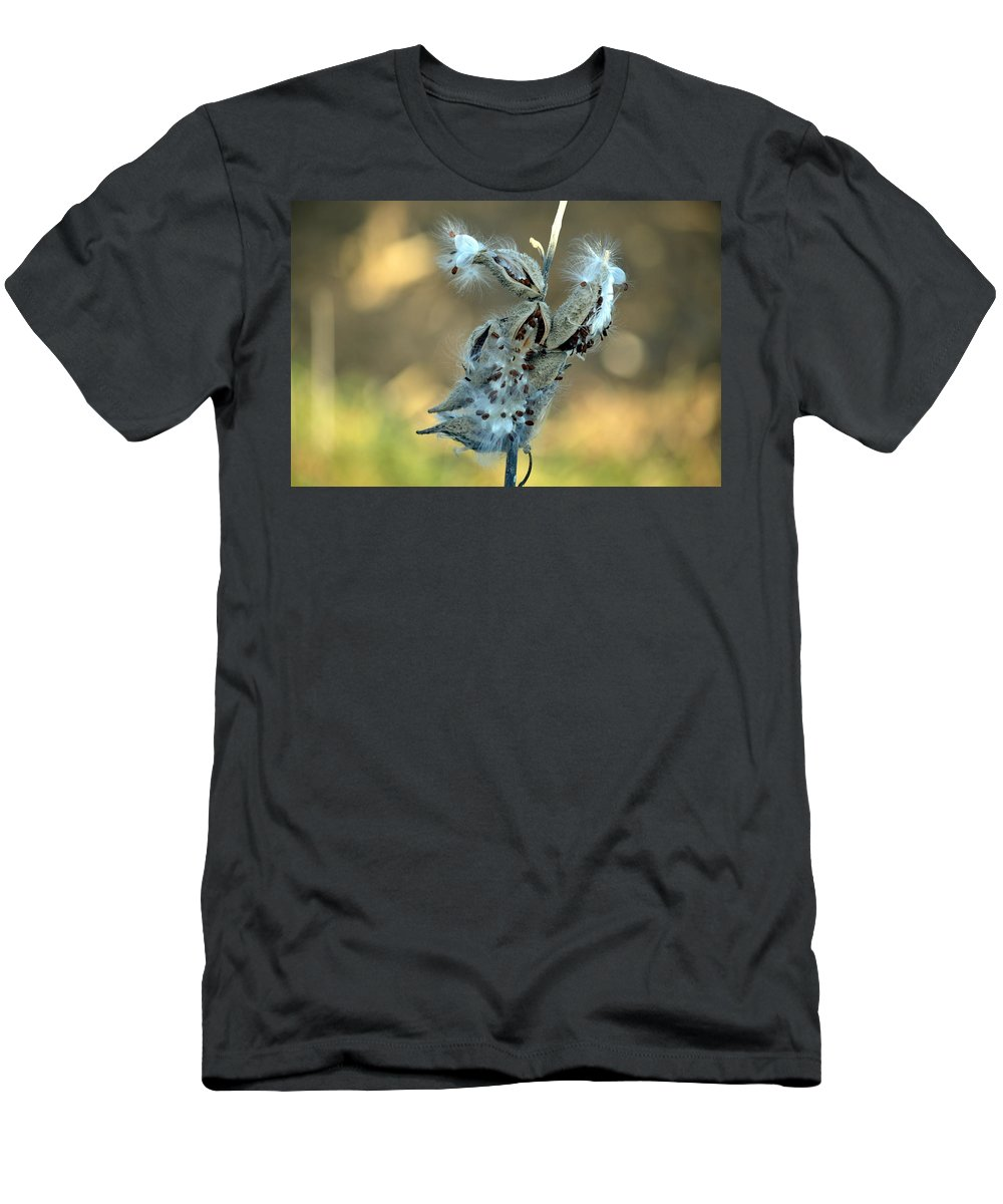 Seeds Men's T-Shirt (Athletic Fit) featuring the photograph Monarch Seeds by Bonfire Photography