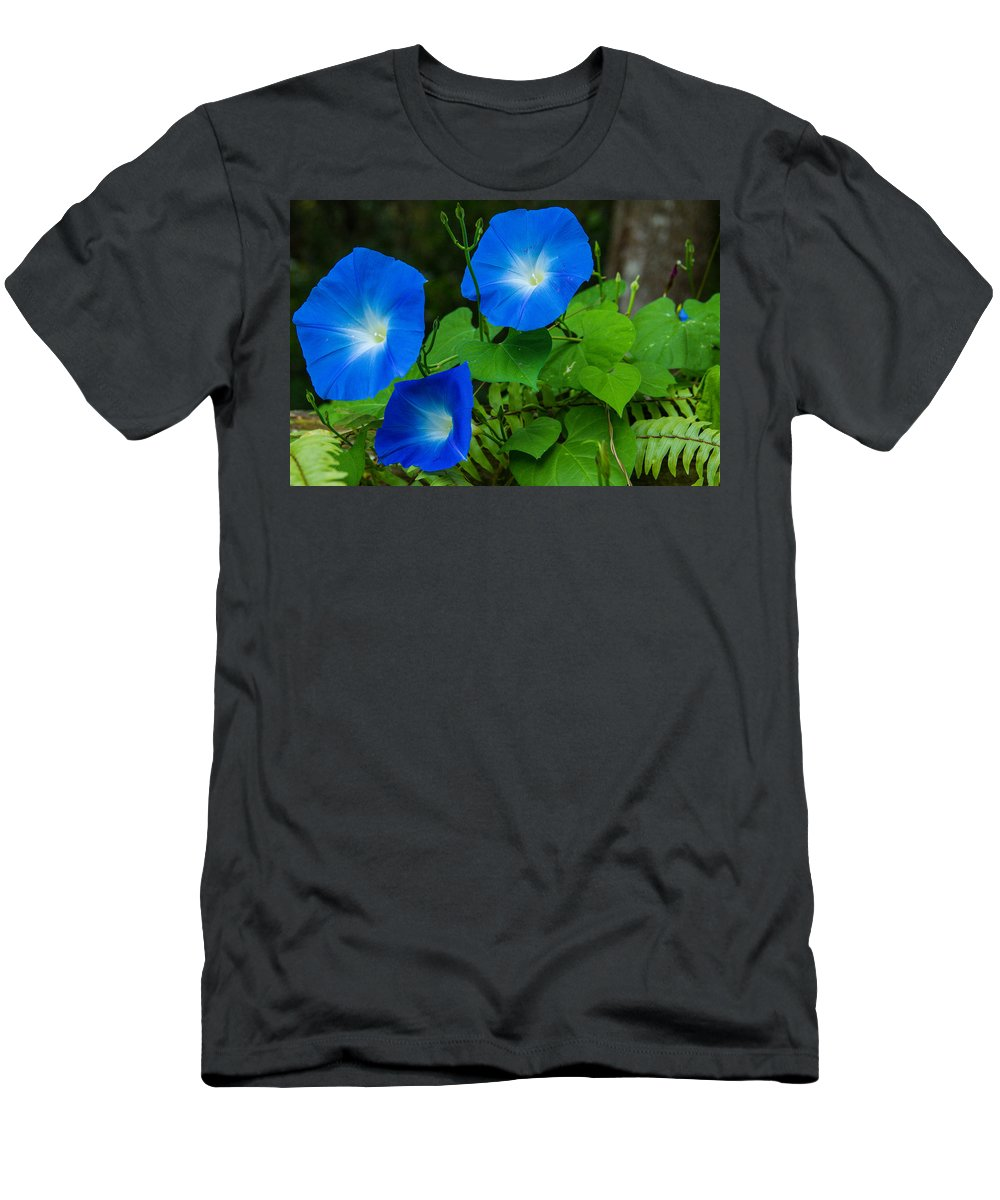 Morning Men's T-Shirt (Athletic Fit) featuring the photograph Morning Glory Family by Bonnie Marquette