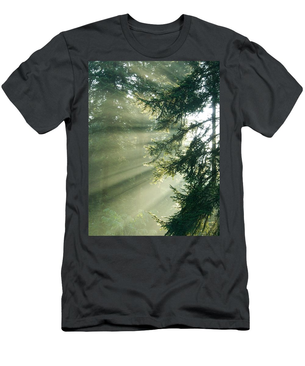 Light Men's T-Shirt (Athletic Fit) featuring the photograph Morning Light IIi by Daniel Csoka
