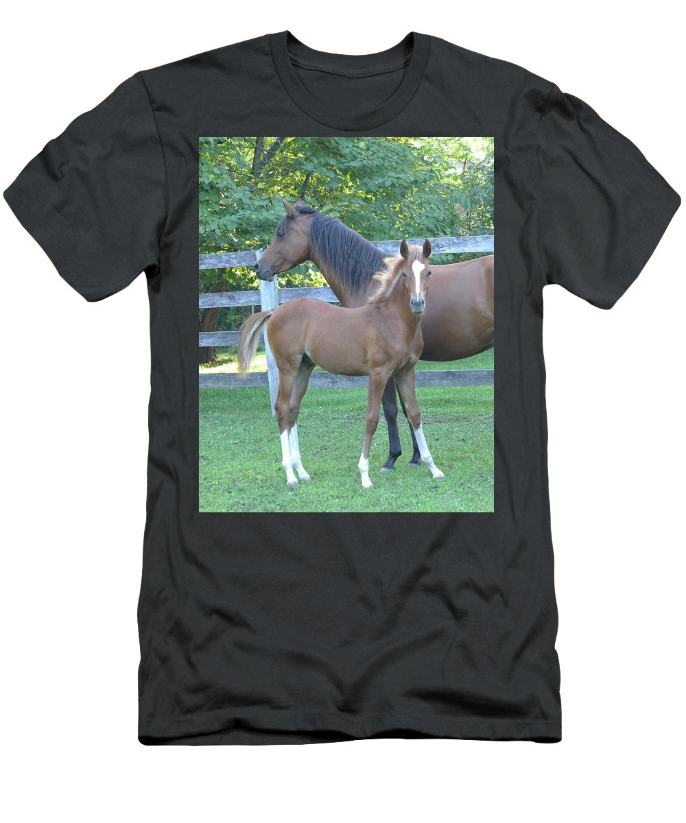 Horse Men's T-Shirt (Athletic Fit) featuring the photograph Mother And Son by Michael Barry