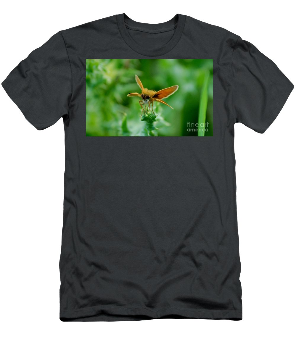 Landscape Men's T-Shirt (Athletic Fit) featuring the photograph Mothera by David Lane