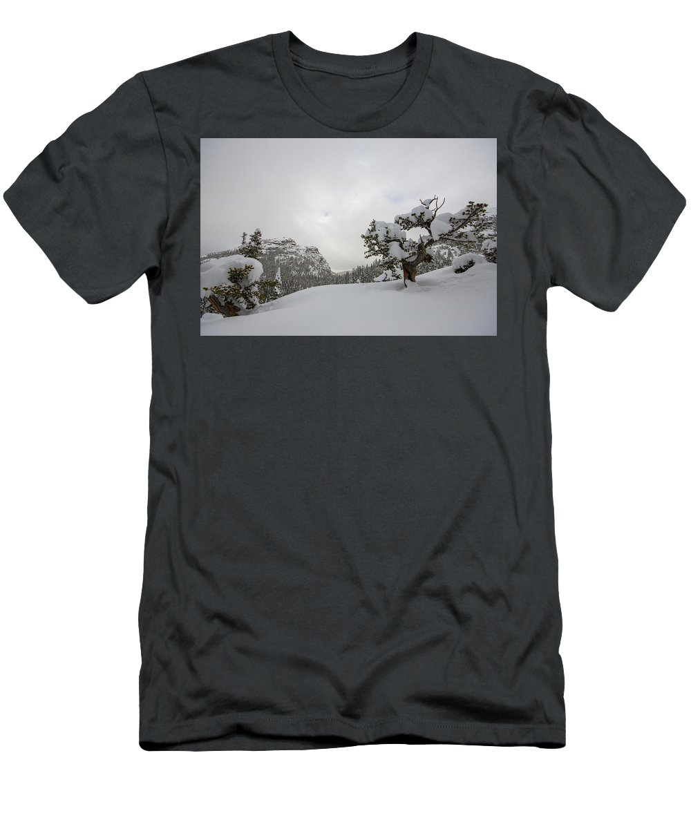Landscape Men's T-Shirt (Athletic Fit) featuring the photograph Mountain Lonely Tree by Rob Lantz