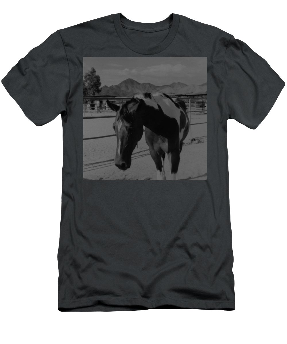 Black And White Men's T-Shirt (Athletic Fit) featuring the photograph Mr Ed In Black And White by Rob Hans