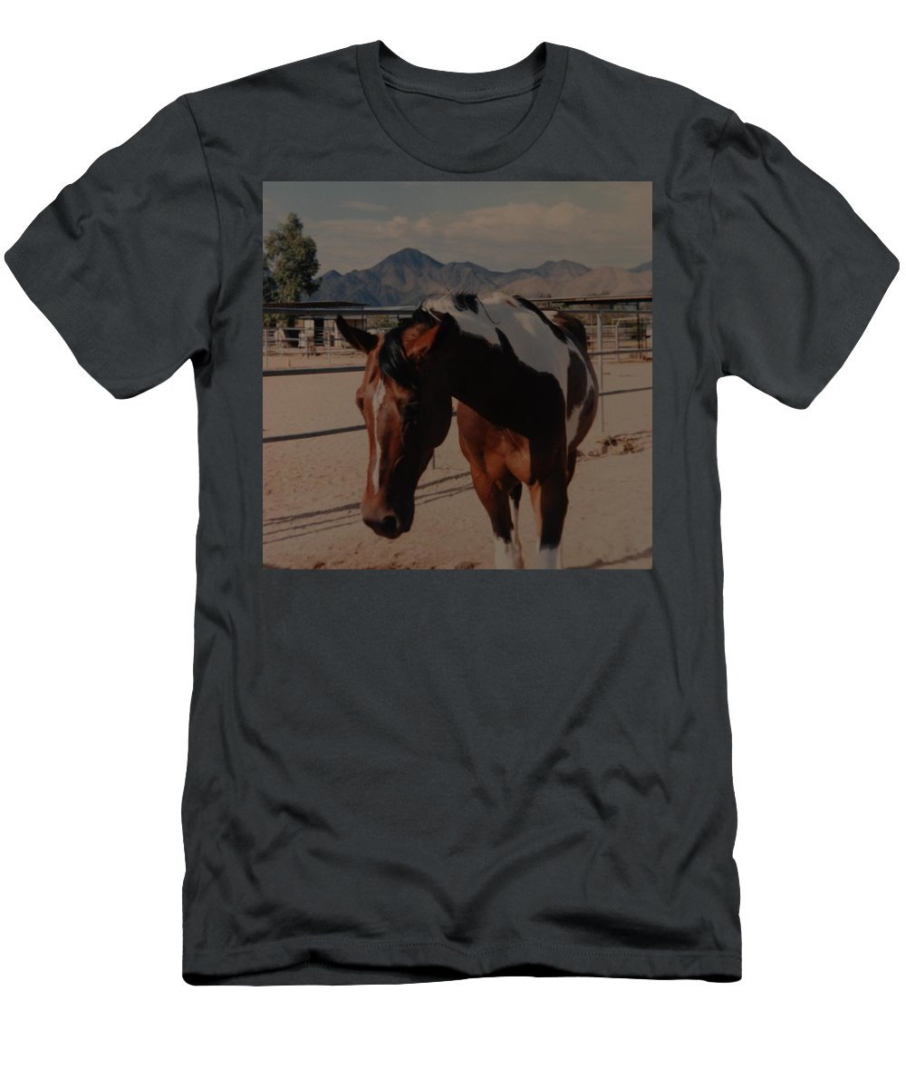 Horse Men's T-Shirt (Athletic Fit) featuring the photograph Mr Ed by Rob Hans