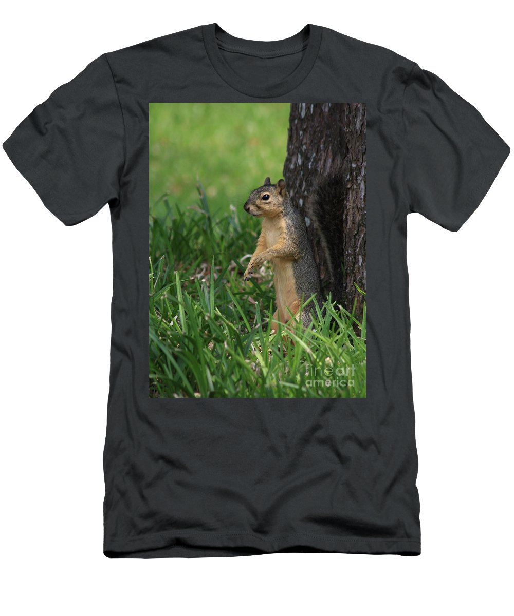 Squirrels Men's T-Shirt (Athletic Fit) featuring the photograph Mr. Squirrel by Kim Henderson