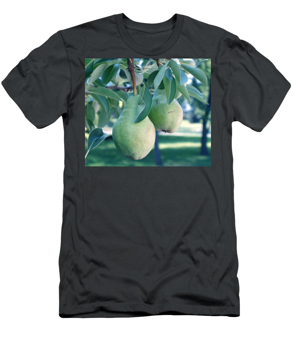 Pears Men's T-Shirt (Athletic Fit) featuring the painting My Brothers Pear Tree by Wayne Potrafka
