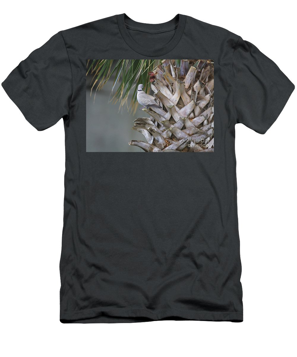 Palm Men's T-Shirt (Athletic Fit) featuring the photograph My Own Palm Tree by Deborah Benoit