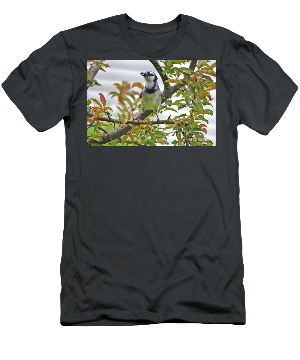 Bluejay Men's T-Shirt (Athletic Fit) featuring the photograph My Reward by Deborah Benoit