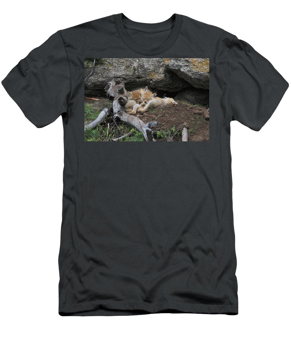 Coyote Men's T-Shirt (Athletic Fit) featuring the photograph Nap Time by Steve Stuller