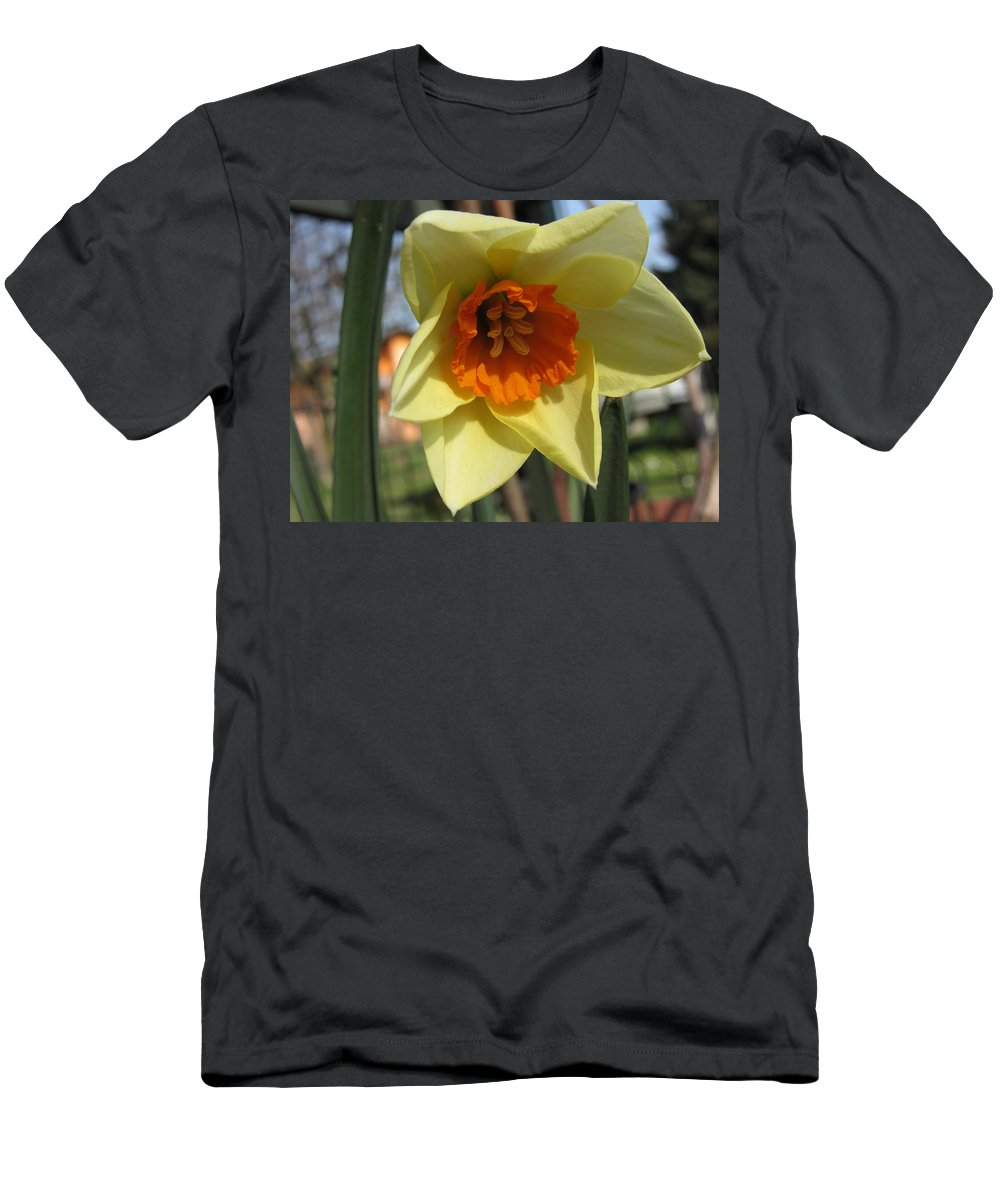 Flowers Men's T-Shirt (Athletic Fit) featuring the photograph Narcissus by Vesna Martinjak