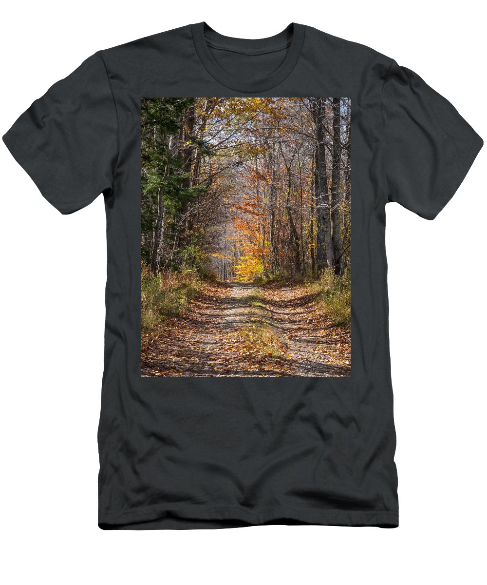 Dirt Road Men's T-Shirt (Athletic Fit) featuring the photograph Narrow Road by Diane Moore