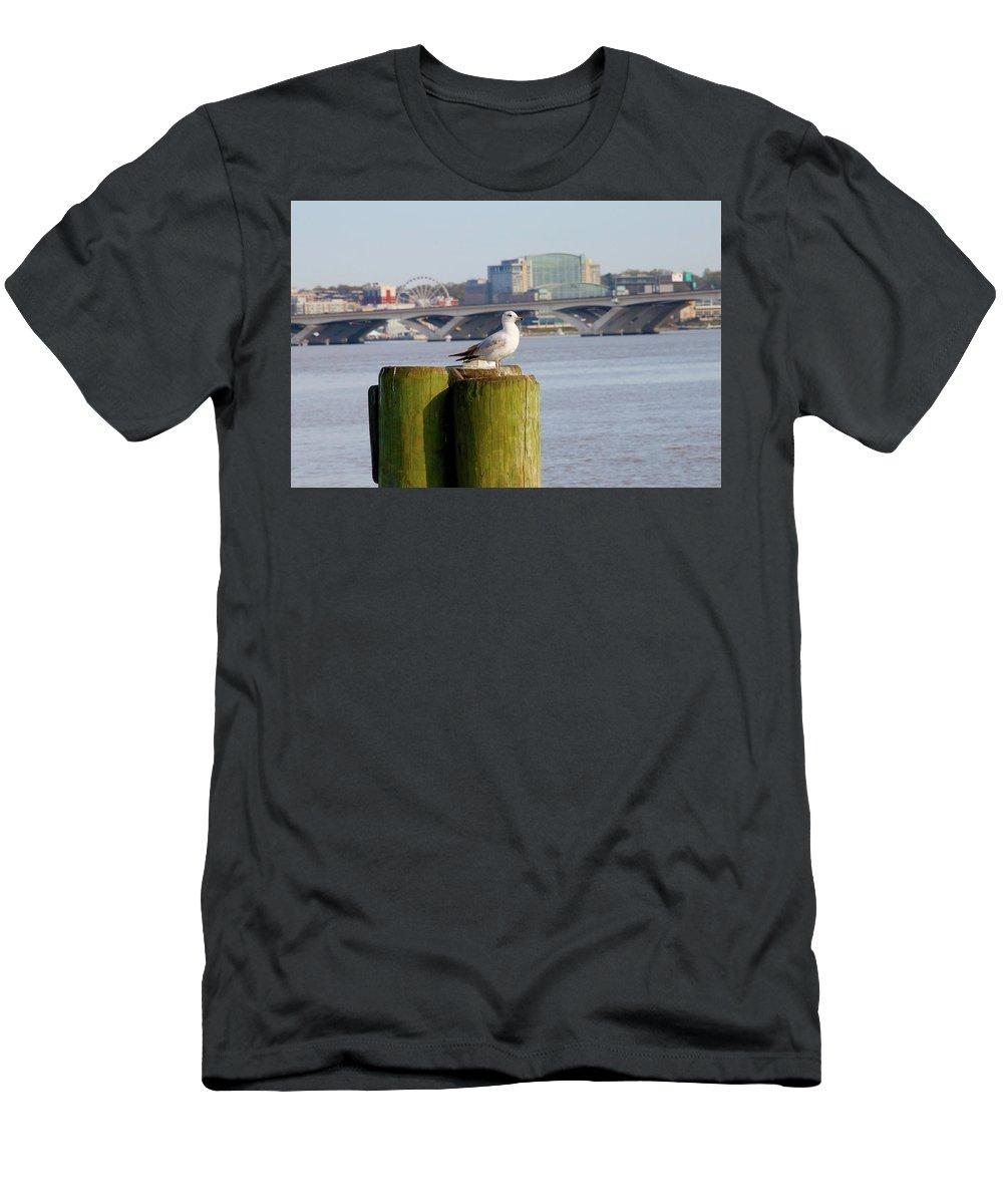 National Harbor From Alexandria T-Shirt featuring the photograph National Harbor From Old Town Alexandria by Tony Umana