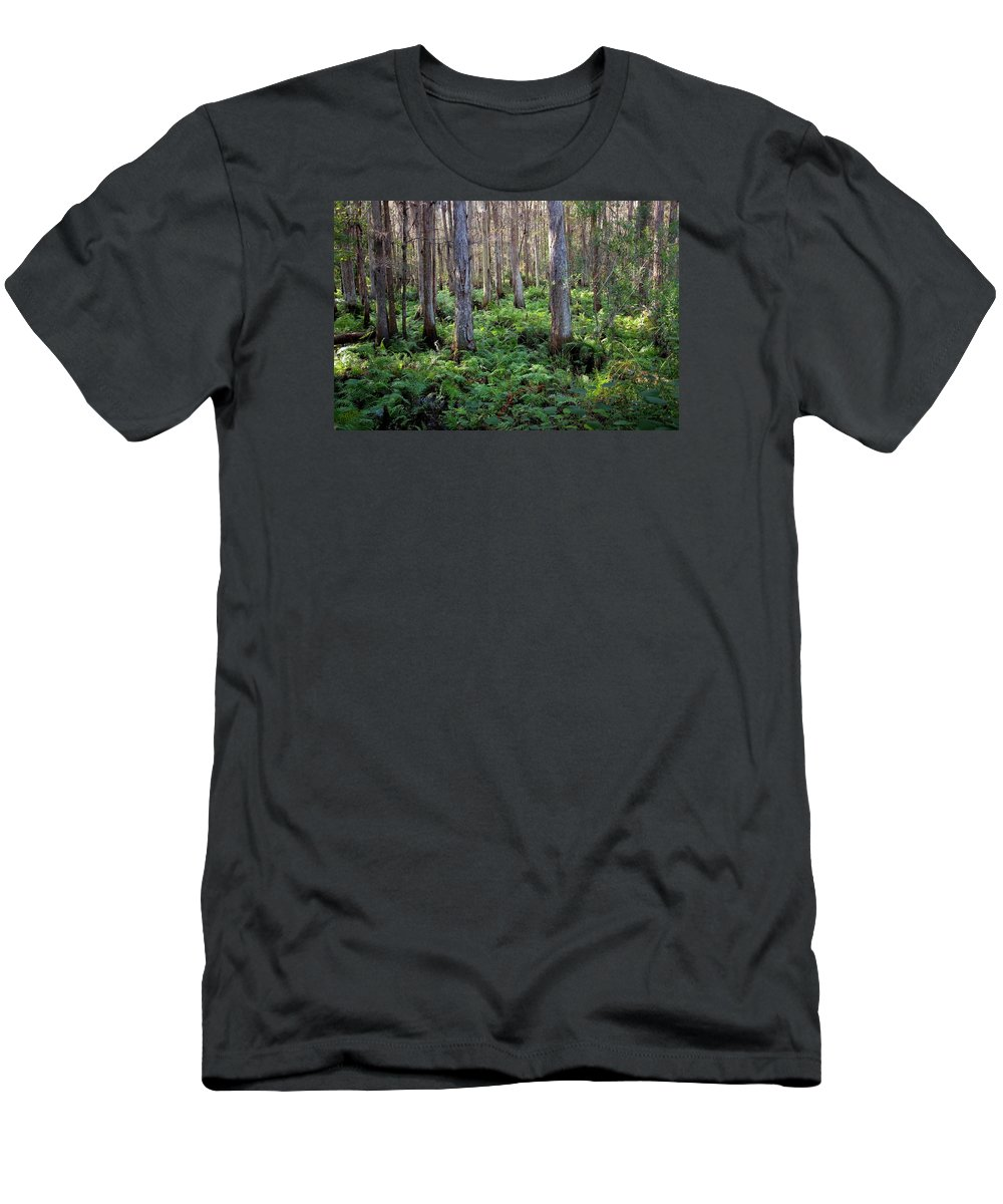 Woods Men's T-Shirt (Athletic Fit) featuring the photograph Nature's Heartbeat by Dario Boriani