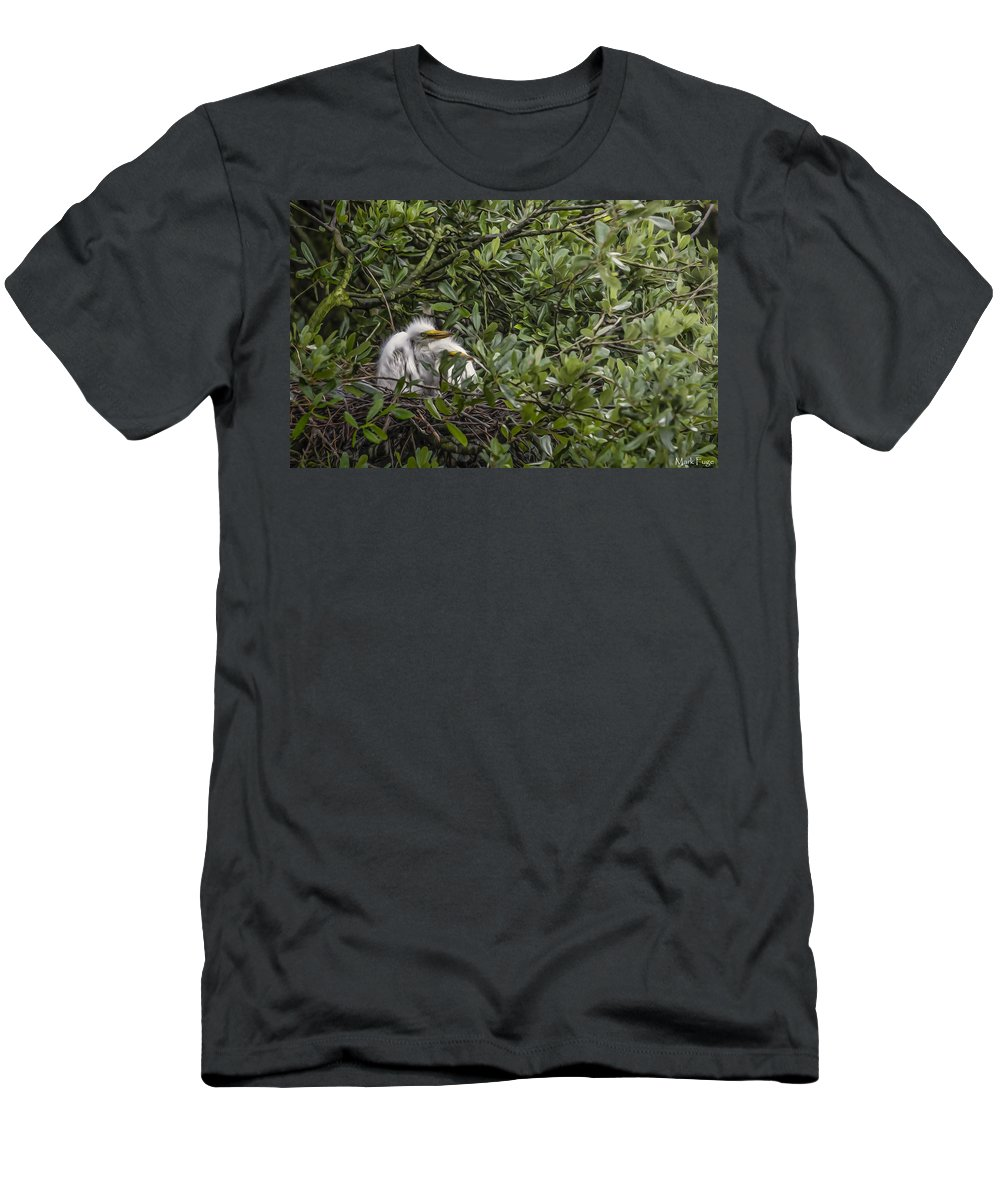 Florida Men's T-Shirt (Athletic Fit) featuring the photograph Nesting Chicks by Mark Fuge