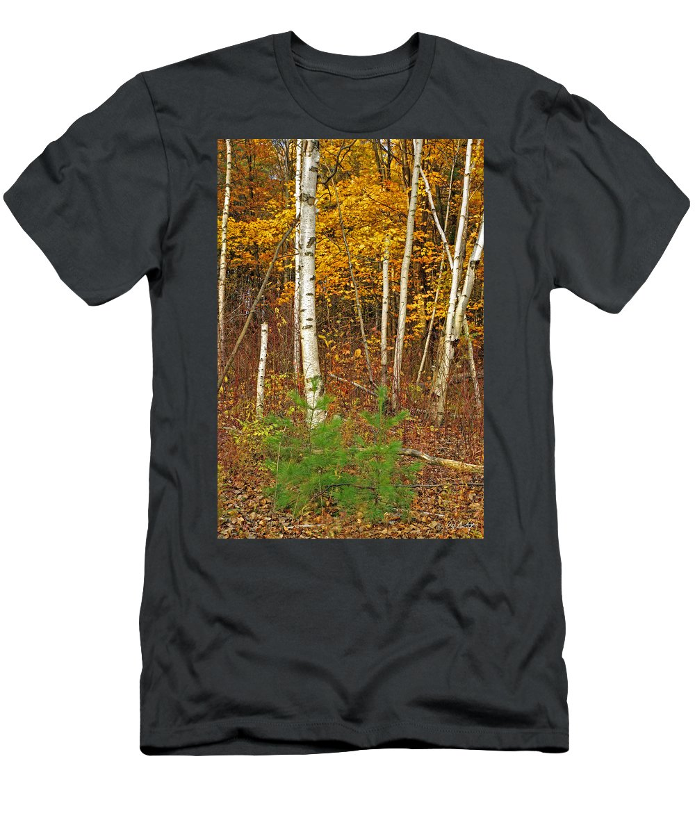 Fine Art Men's T-Shirt (Athletic Fit) featuring the photograph New Growth Old Leaves by Phill Doherty