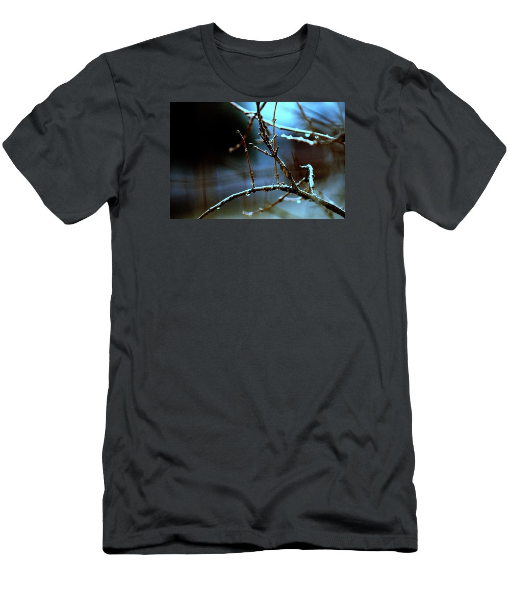 Night Men's T-Shirt (Athletic Fit) featuring the photograph Nighttime In The Garden by Laurie Fraser