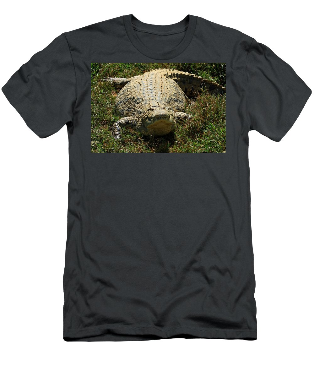 Crocodile Men's T-Shirt (Athletic Fit) featuring the photograph Nile Crocodile - Africa by Aidan Moran
