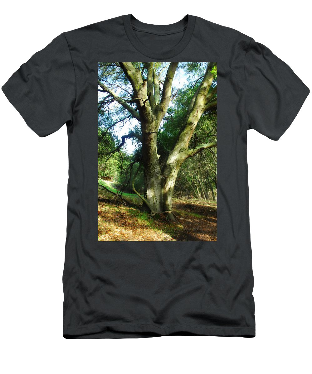 Tree Men's T-Shirt (Athletic Fit) featuring the photograph Nothing Lovely As by Donna Blackhall