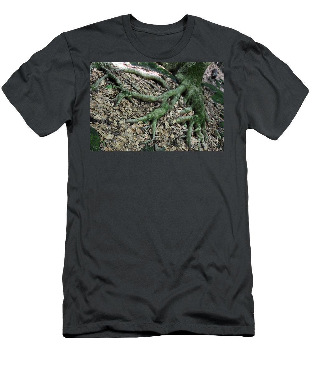 Trees Men's T-Shirt (Athletic Fit) featuring the photograph Nourishment by Amanda Barcon