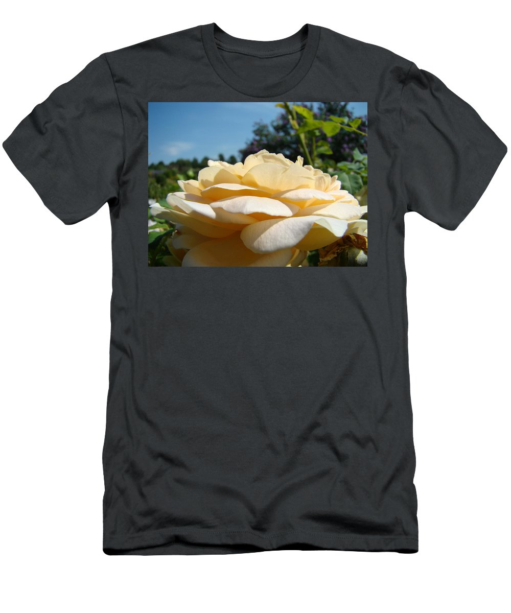 Rose Men's T-Shirt (Athletic Fit) featuring the photograph Office Art Rose Landscape Peach Roses Flowers Giclee Baslee Troutman by Baslee Troutman