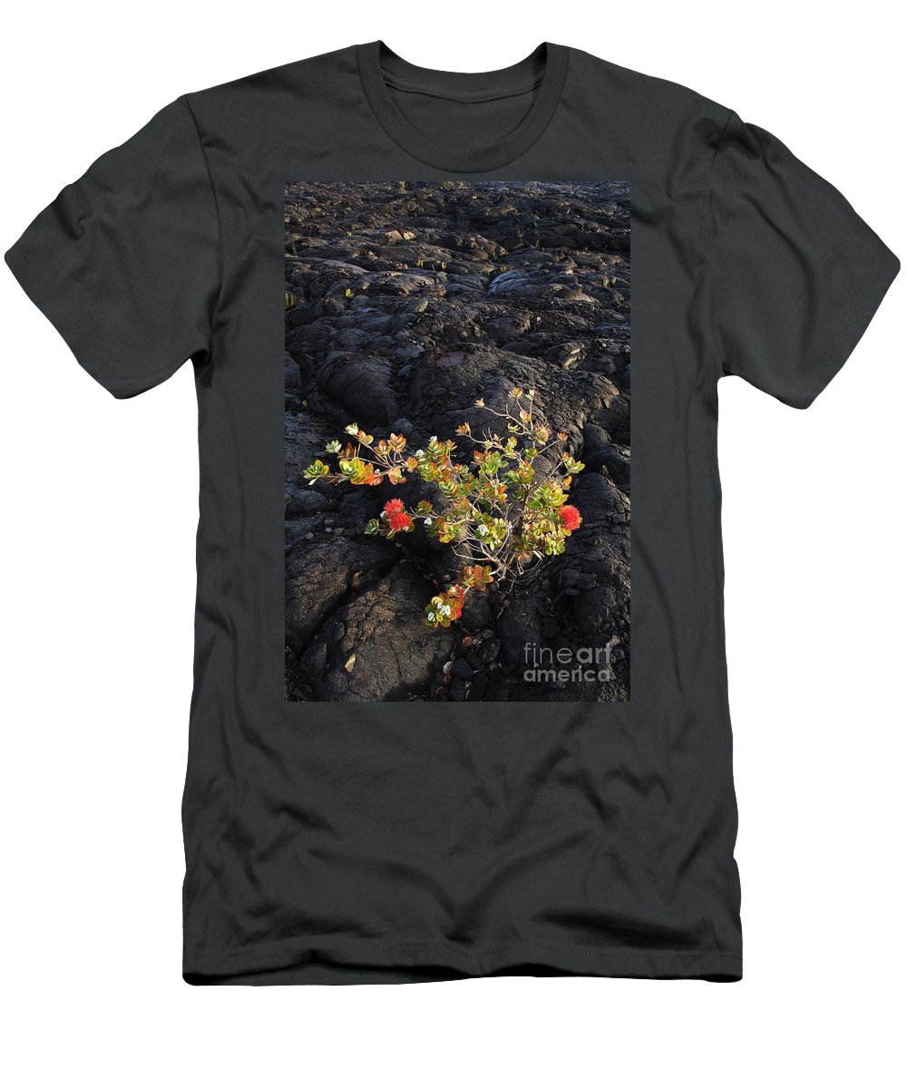 Beginning Men's T-Shirt (Athletic Fit) featuring the photograph Ohia Lehua by Greg Vaughn - Printscapes