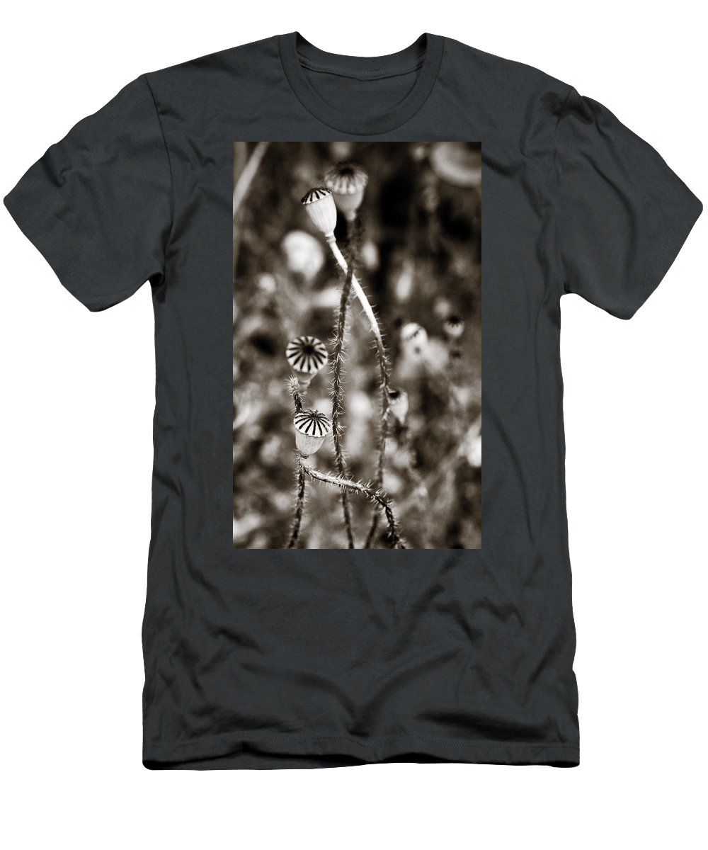 Floral Men's T-Shirt (Athletic Fit) featuring the photograph Old Poppies by Marilyn Hunt
