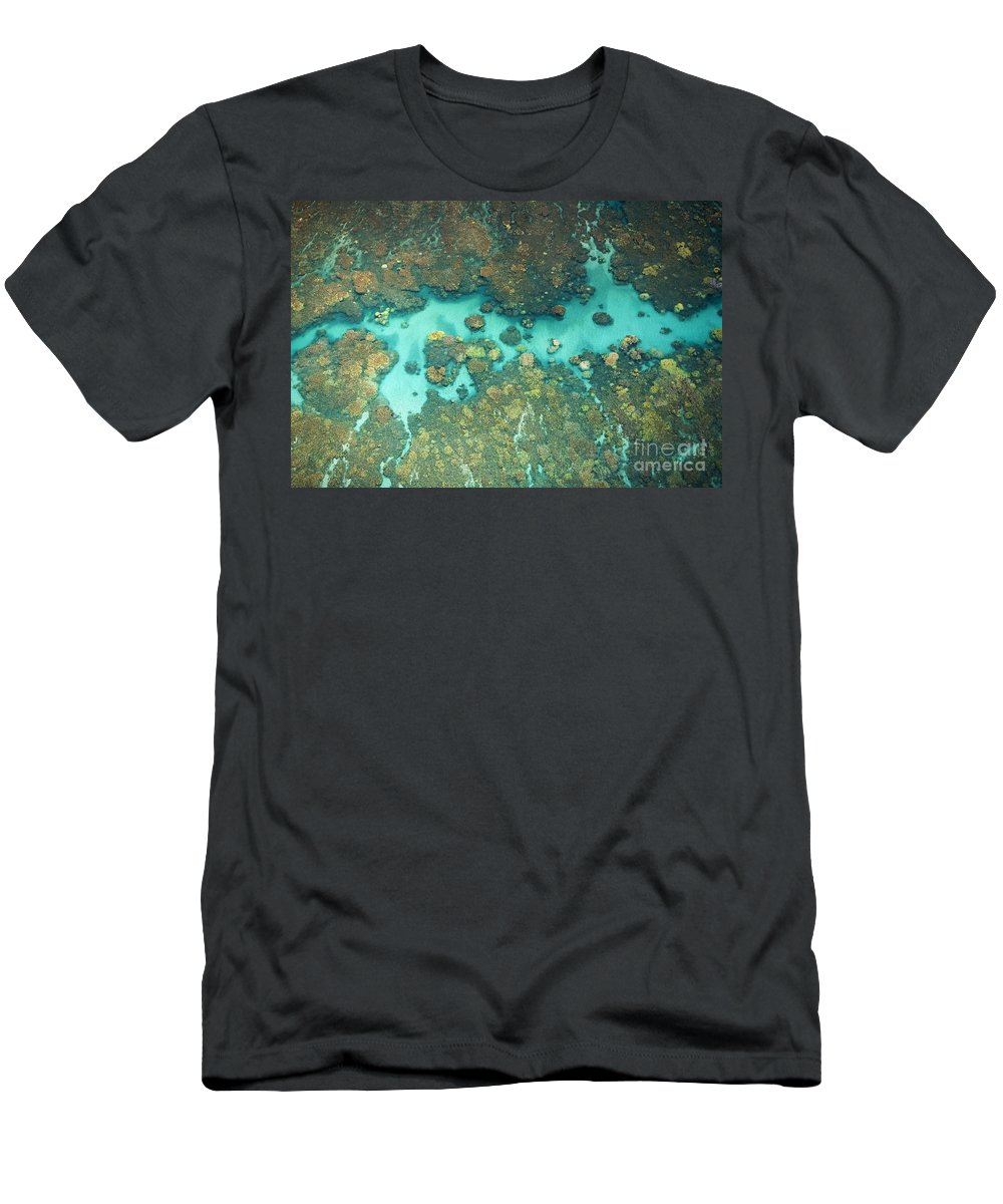 Above Men's T-Shirt (Athletic Fit) featuring the photograph Olowalu Coral by Ron Dahlquist - Printscapes