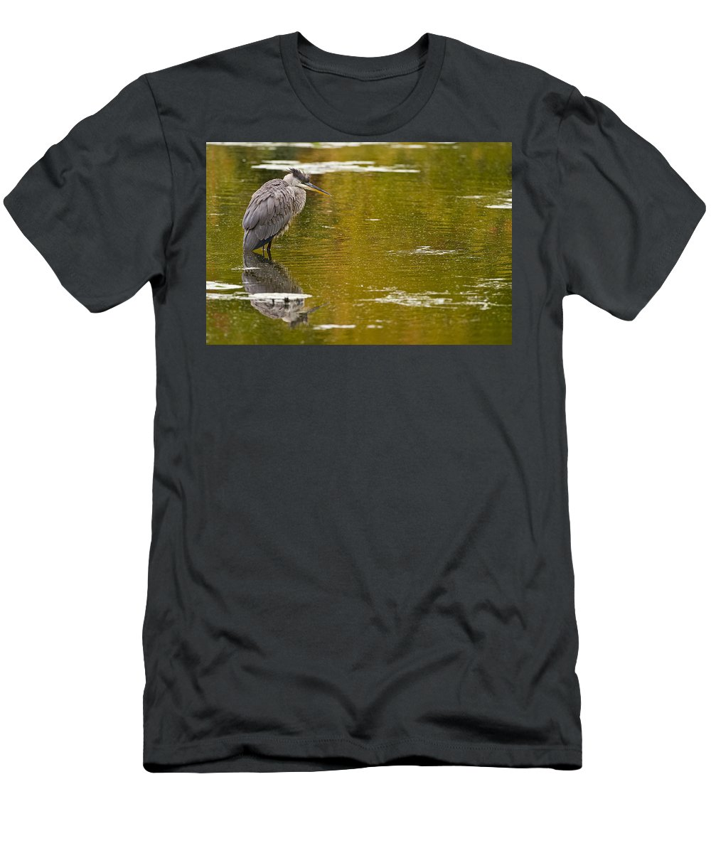 Birds Men's T-Shirt (Athletic Fit) featuring the photograph On Golden Pond by Michael Cummings