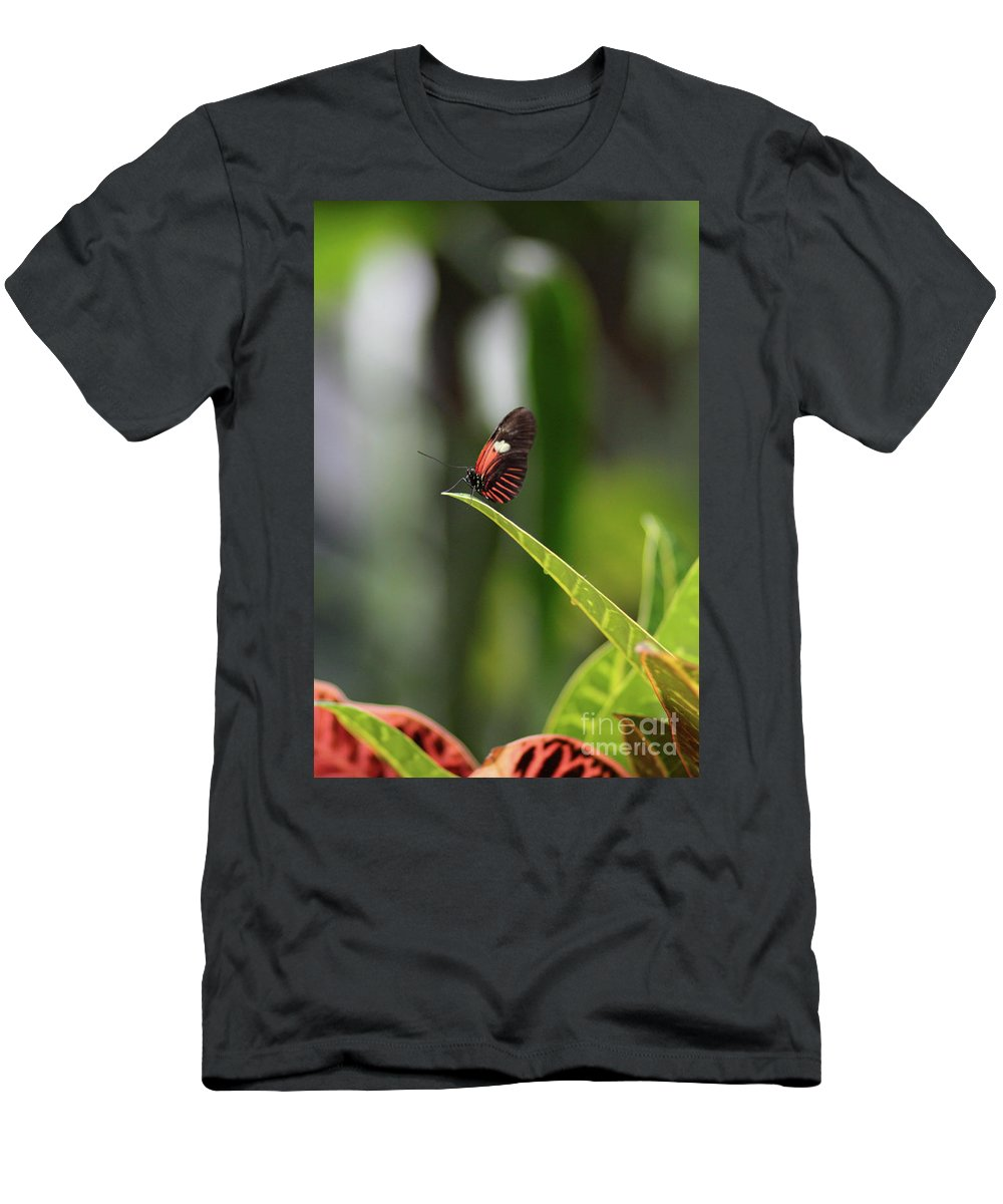Butterfly Men's T-Shirt (Athletic Fit) featuring the photograph On The Edge by Robert Pearson