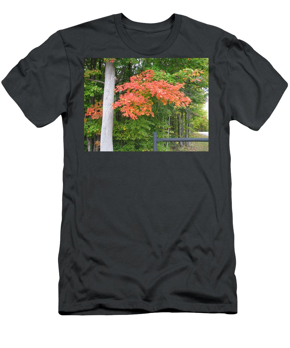 Fall Men's T-Shirt (Athletic Fit) featuring the photograph Onaway by Kelly Mezzapelle