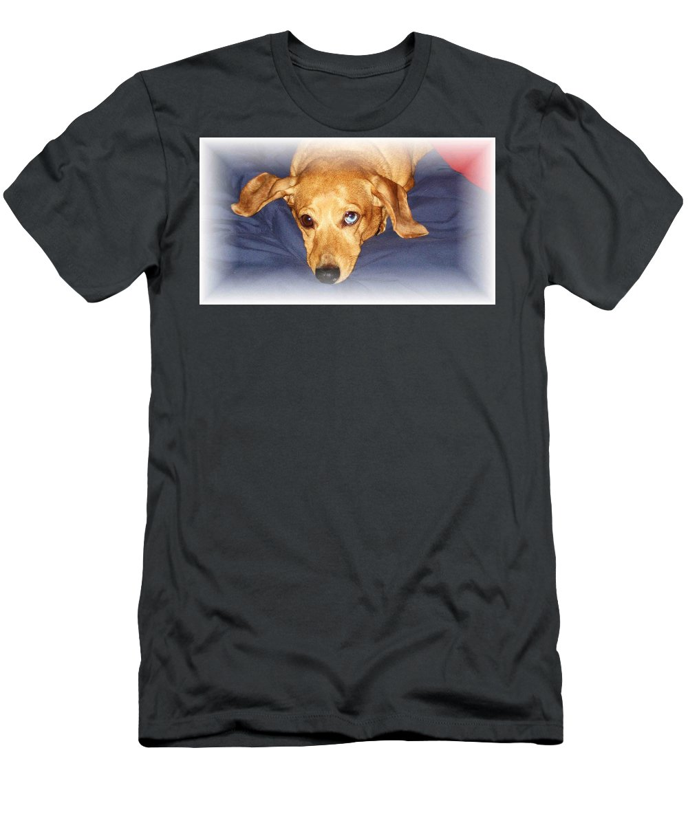 Dachshund Men's T-Shirt (Athletic Fit) featuring the photograph One Blue Eye by Nelson Strong