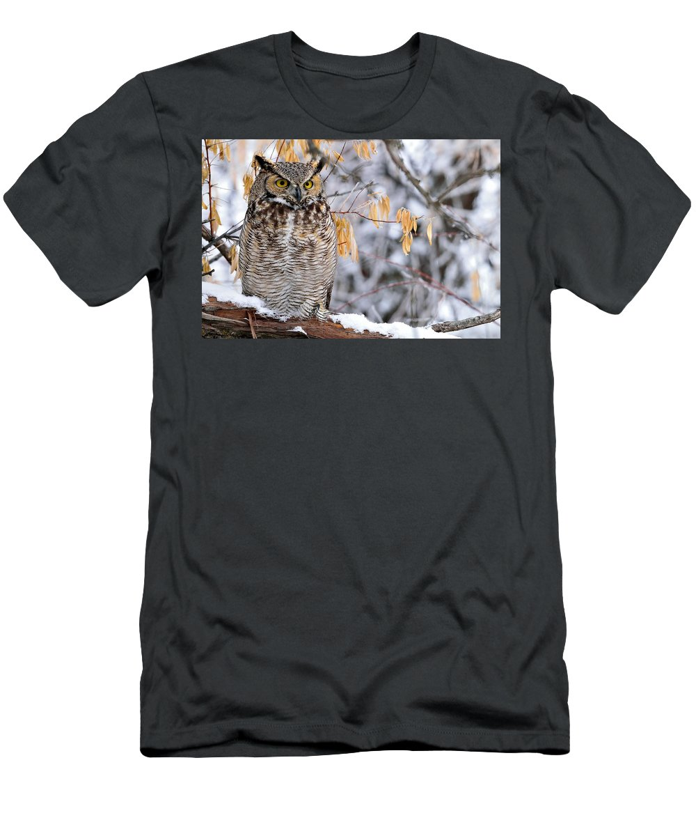 Winter Men's T-Shirt (Athletic Fit) featuring the photograph One Of The Greats by Michael Morse