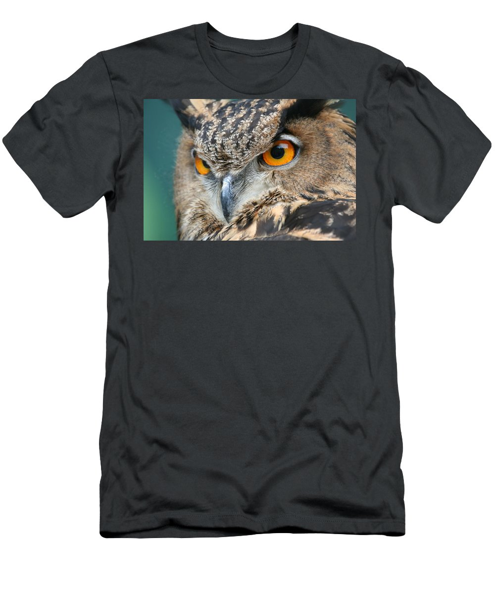 Owl Men's T-Shirt (Athletic Fit) featuring the photograph Orange Crush by Laddie Halupa