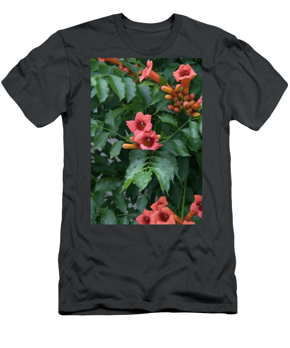 Flowers Men's T-Shirt (Athletic Fit) featuring the photograph Orange Flowers On A Vine by Joy Rector