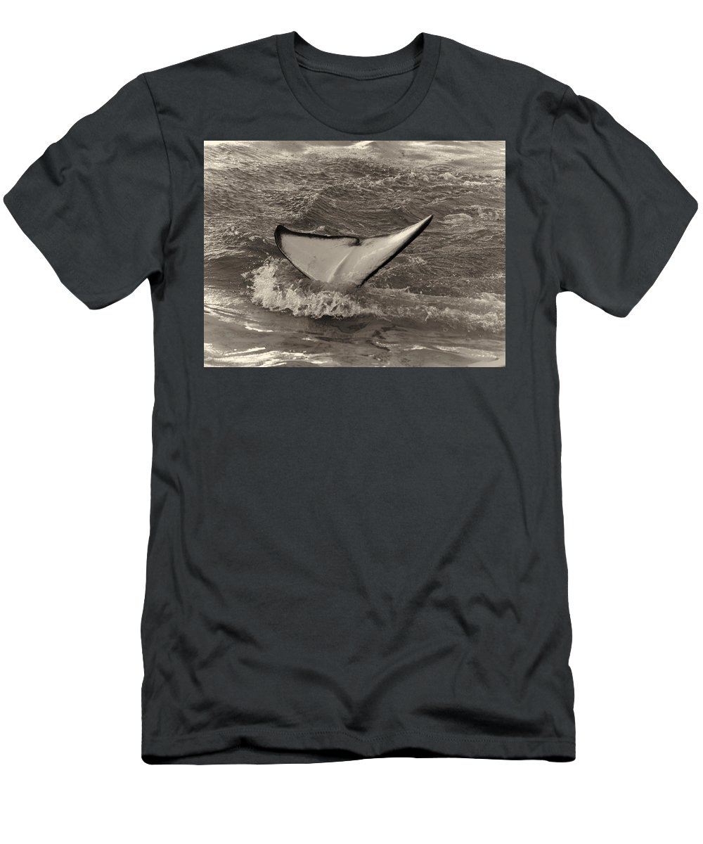 Loro Park Men's T-Shirt (Athletic Fit) featuring the photograph Orca 2 by Jouko Lehto